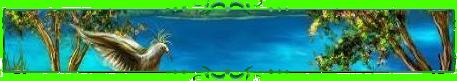 Море Ароматов
