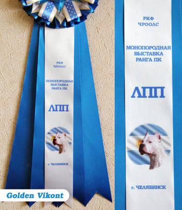 Наградные розетки на заказ от Golden Vikont - Страница 7 U6P5G