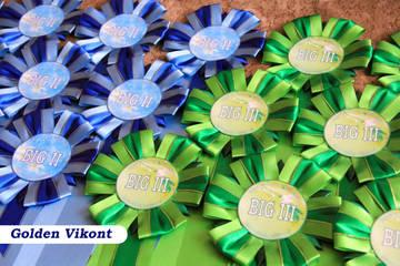 Наградные розетки на заказ от Golden Vikont - Страница 7 Wzhil