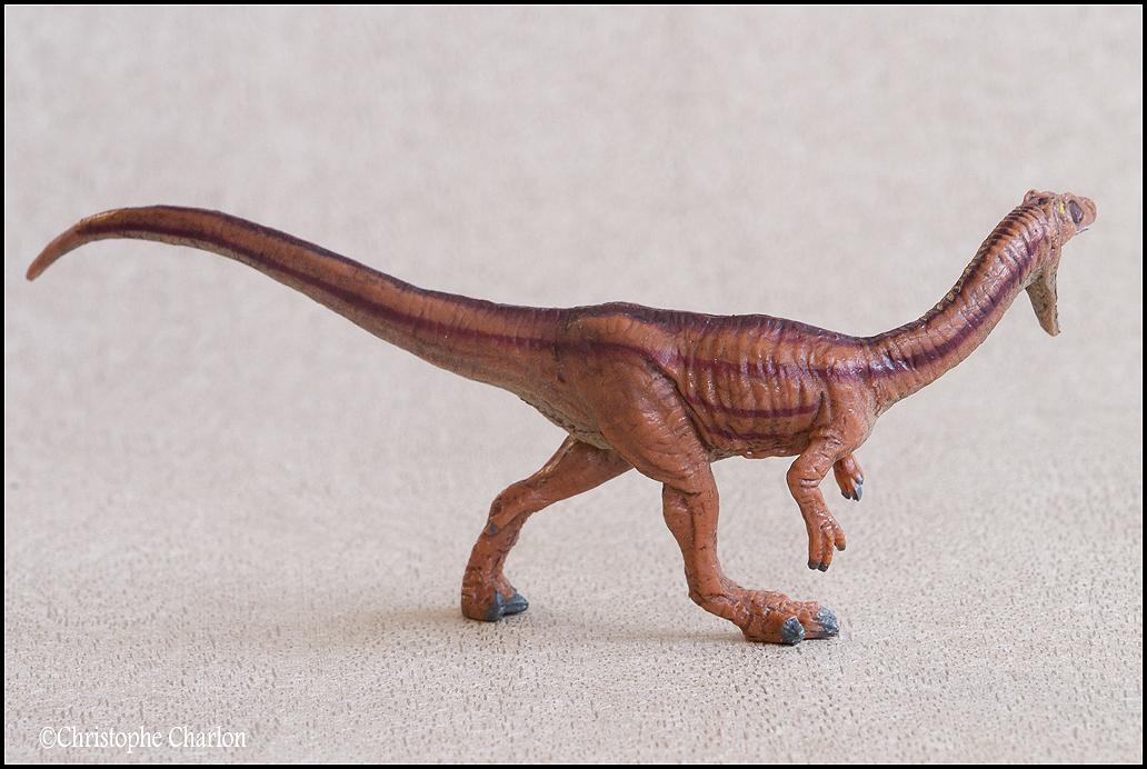 "Kinto Favorite ""Redondasaurus vs Coelophysis"" set walkaround by Kikimalou Kinto_favorite_Fukui_Museum_Coelophysis_3"