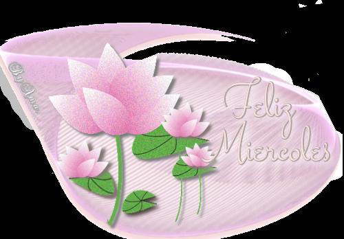 Lotos en Rosa MIERCOLES