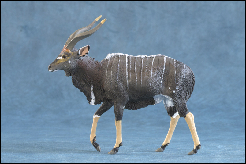 Ana's Nyala: a small walkaround by Kikimalou Mountain_Nyala_DOBROWOSLKA-3.jpg_original