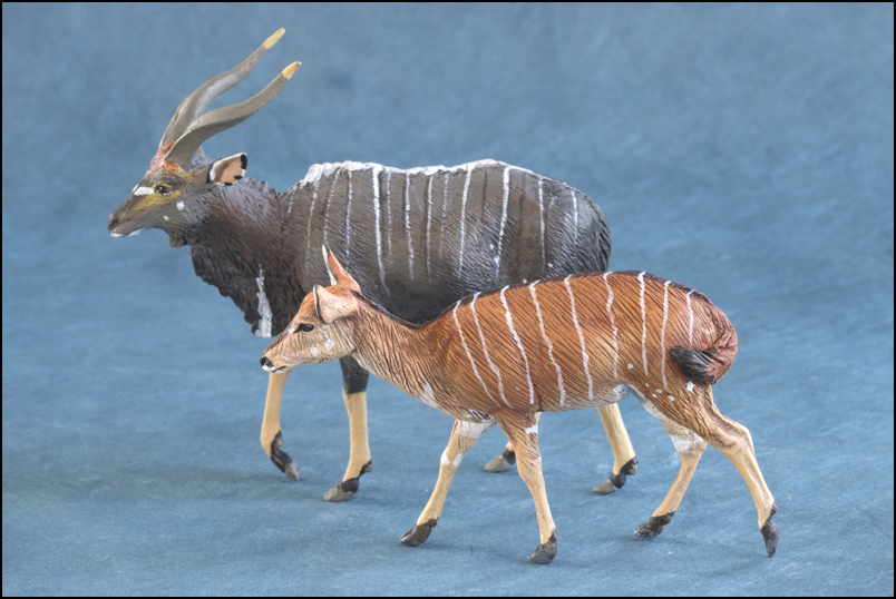 Ana's Nyala: a small walkaround by Kikimalou Mountain_Nyala_DOBROWOSLKA-16.jpg_original