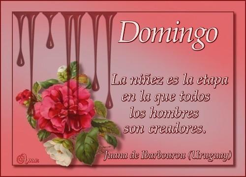 Caen Gotas Sobre las Flores con Frase  DOMINGO