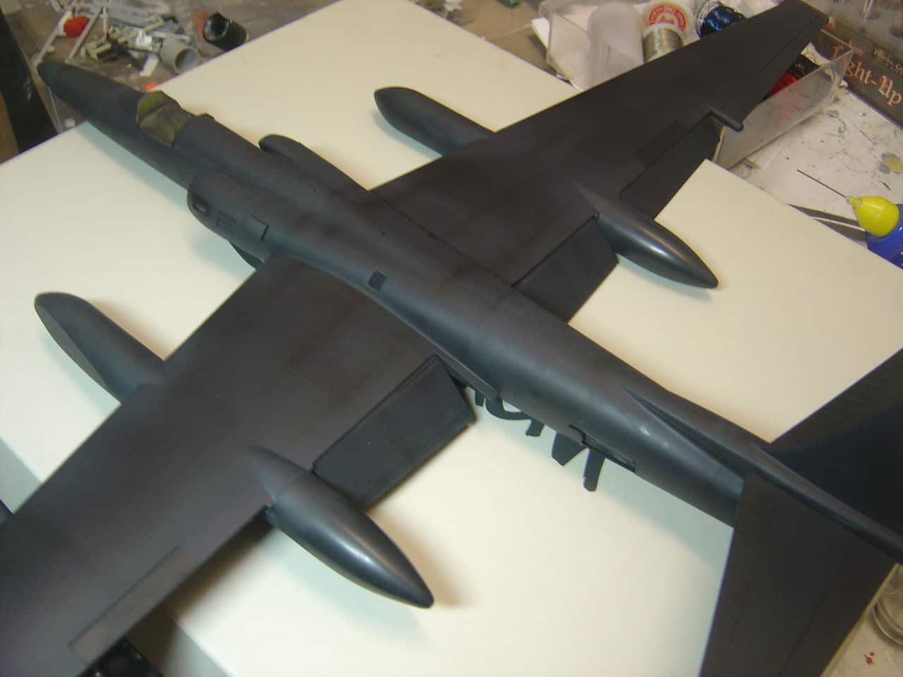 U-2  (οχι το συγκροτημα ρεεε...) R  Senior Span. - Σελίδα 2 DSC02827