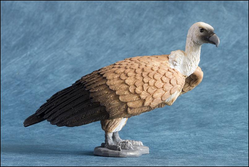 Mojo Griffon vulture: A walkaround by kikimalou Mojo387165_Griffon_Vulture-1.jpg_original