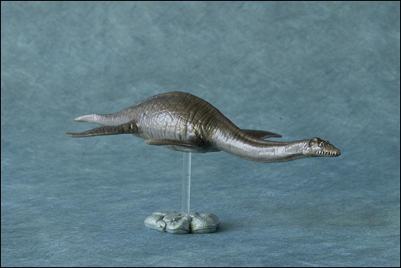 The 2013 KINTO FAVORITE Plesiosaurus walkaround. Plesiosaurus_Kintofavorite-16