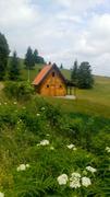 Tara-jedna od najlepsih planina Srbije IMG_20180622_111543