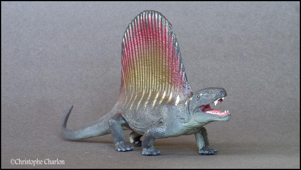 Favorite Prehistoric Life Softmodel Dimetrodon: A walkaround by Kikimalou Kinto_Favorite_Dimetrodon_10