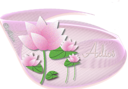 Lotos en Rosa ADIOS