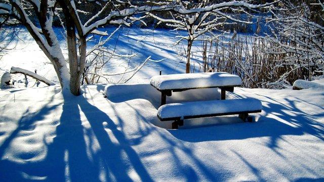 klupa nekoga čeka - Page 5 Snow_winter_bench_tree