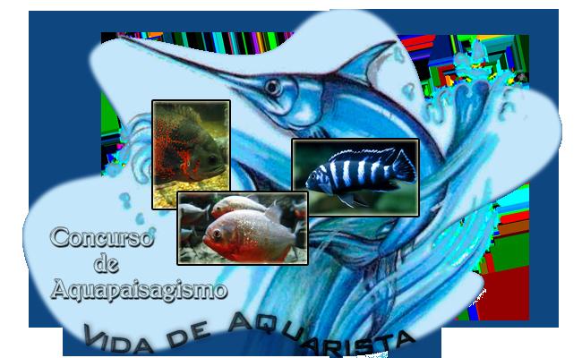"""2° Concurso de aquapaisagismo """"VDA"""" 2016 (Fotografia, o tema é Livre). J_ZFR5_G9"""