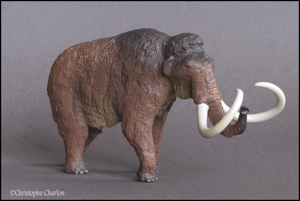 Kinto Favorite FP-002 Wooly Mammoth: A walkaround by Kikimalou Kinto_Favorite_FP-002_Woolly_Mammoth_9.jpg_origi
