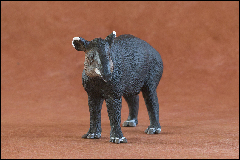 Ana's mountain tapir : A walkaround by Kikimalou Mountaintapir_DOBROWOSLKA-10.jpg_original