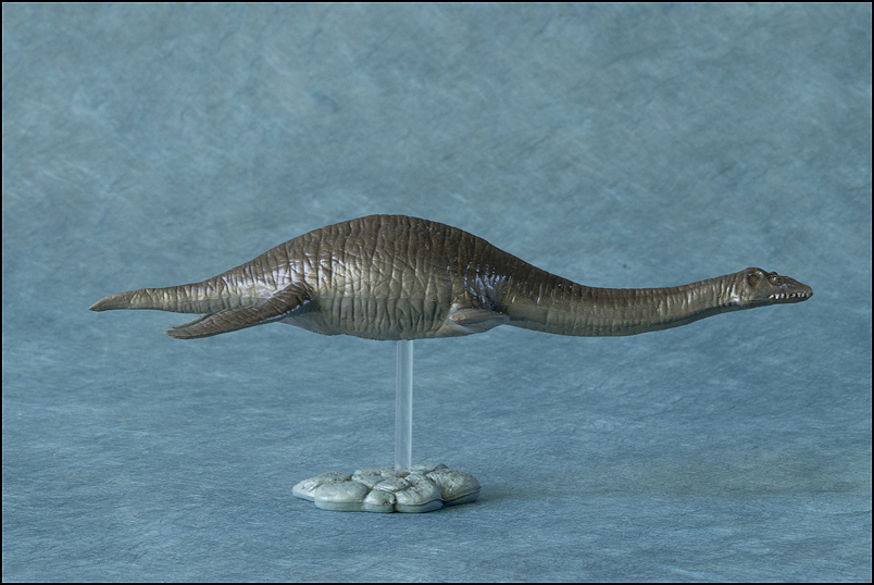 The 2013 KINTO FAVORITE Plesiosaurus walkaround. Plesiosaurus_Kintofavorite-17