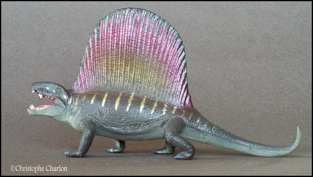 Favorite Prehistoric Life Softmodel Dimetrodon: A walkaround by Kikimalou Kinto_Favorite_Dimetrodon_5