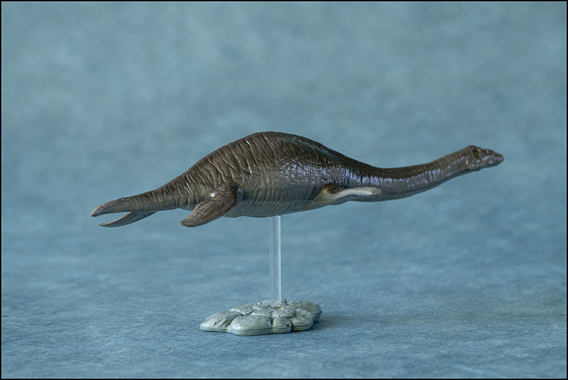 The 2013 KINTO FAVORITE Plesiosaurus walkaround. Plesiosaurus_Kintofavorite-20