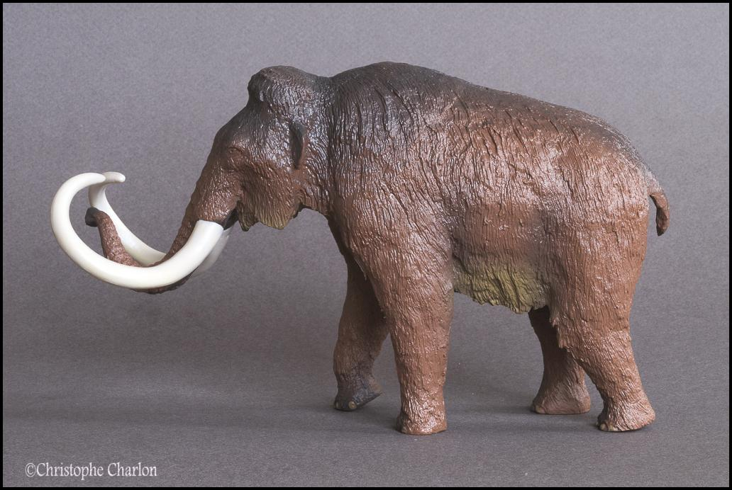 Kinto Favorite FP-002 Wooly Mammoth: A walkaround by Kikimalou Kinto_Favorite_FP-002_Woolly_Mammoth_5.jpg_origi