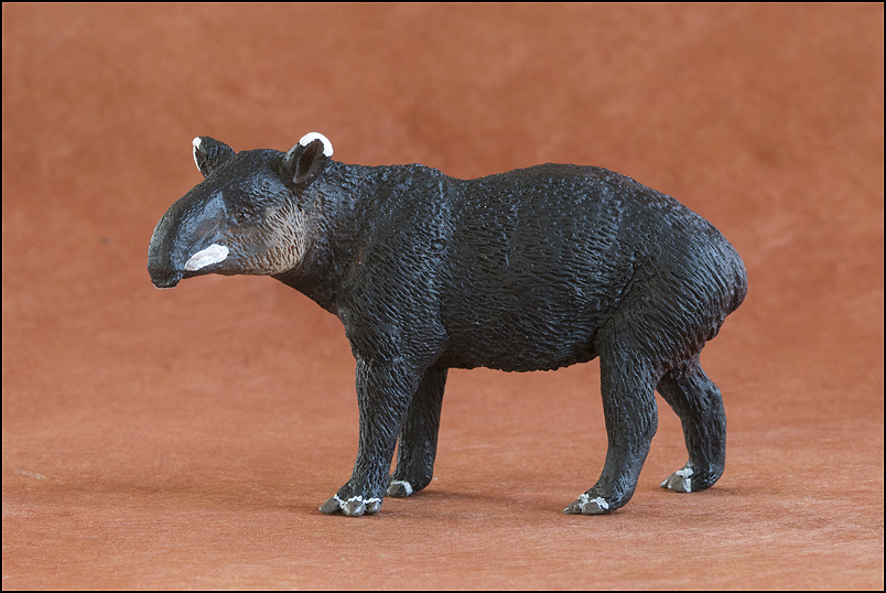 Ana's mountain tapir : A walkaround by Kikimalou Mountaintapir_DOBROWOSLKA-2.jpg_original