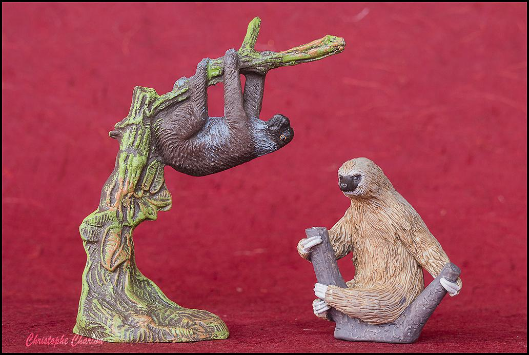 Mojo 387180 Linnaeus's Two-Toed Sloth walkaround by Kikimalou Mojo_387180_Linnaeuss_Two-_Toed_Sloth-10.jpg_orig