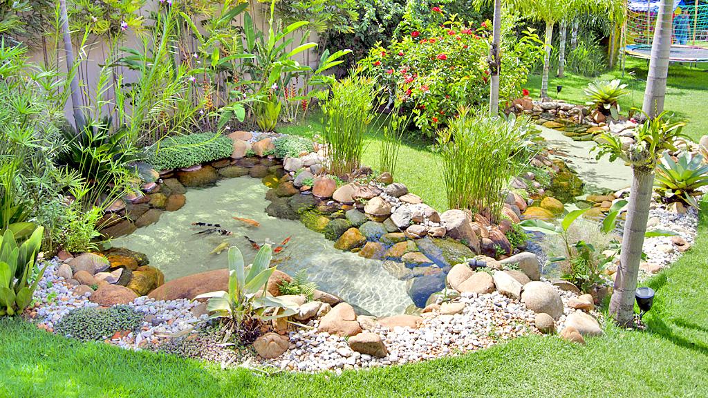 10 lindos lagos Ornamentais Img7