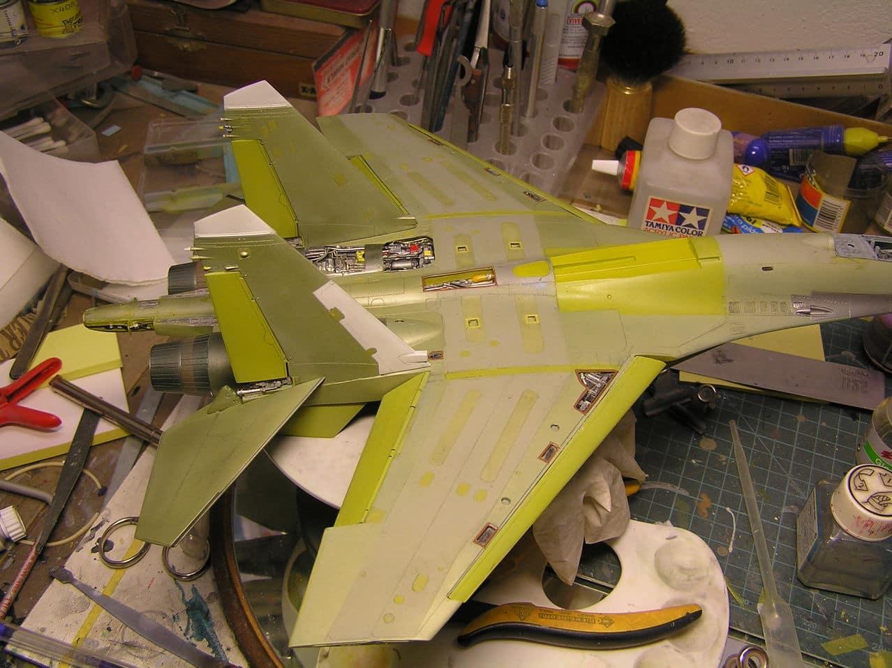 ...καπως ετσι αρχισαν ολα...Su-27  και τα μυαλα στα καγκελα... - Σελίδα 4 P1010195