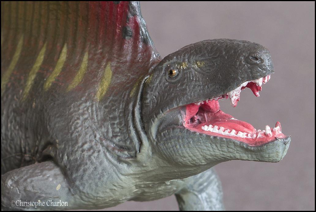 Favorite Prehistoric Life Softmodel Dimetrodon: A walkaround by Kikimalou Kinto_Favorite_Dimetrodon_11