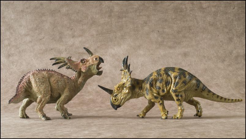 The 2013 KINTO FAVORITE Styracosaurus walkaround. Styracosaurus_Kinto_Favorite-14
