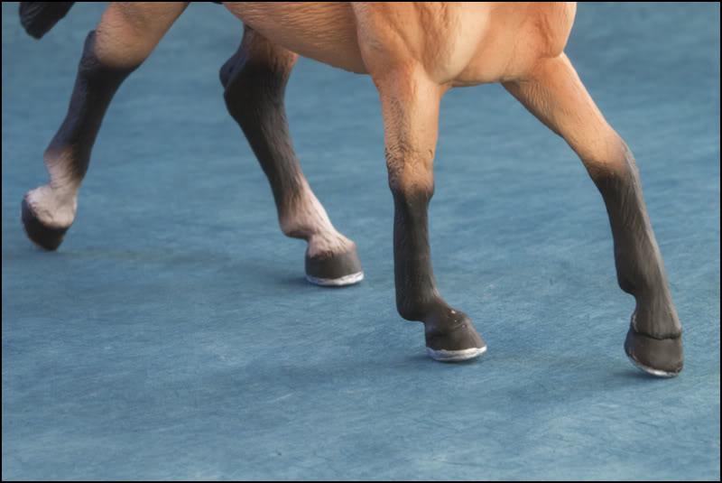 The MOJO FUN 2012 Buckskin Quarter horse walkaround by Kikimalou Buckskin_Quarter_horse_10