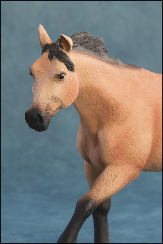 The MOJO FUN 2012 Buckskin Quarter horse walkaround by Kikimalou Buckskin_Quarter_horse_11