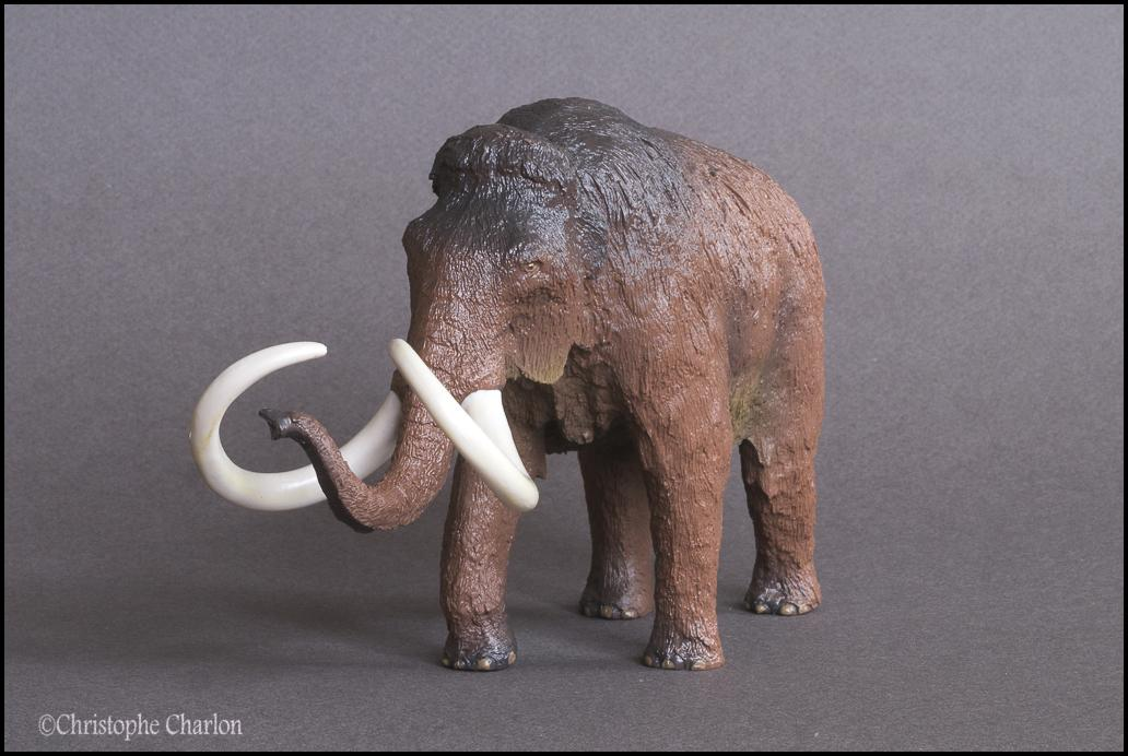 Kinto Favorite FP-002 Wooly Mammoth: A walkaround by Kikimalou Kinto_Favorite_FP-002_Woolly_Mammoth_7.jpg_origi