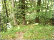 Sljeme - rudnici grofa Cariona PC140166