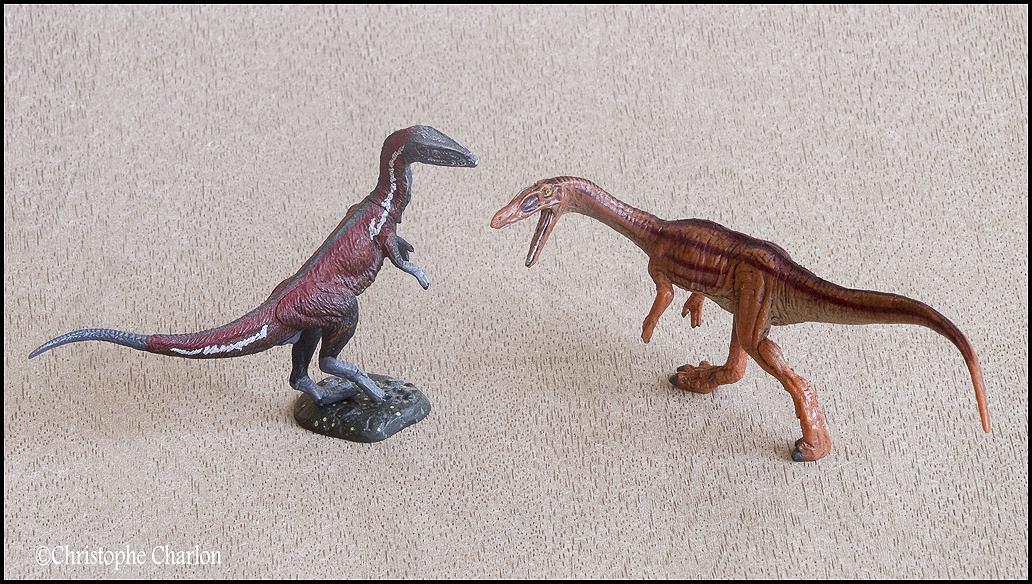 "Kinto Favorite ""Redondasaurus vs Coelophysis"" set walkaround by Kikimalou Kinto_favorite_Fukui_Museum_Coelophysis_10"