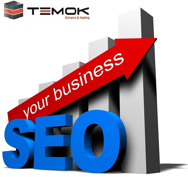 Cheap Internet Marketing / SEO Services From TEMOK || Special Features SEO_Services