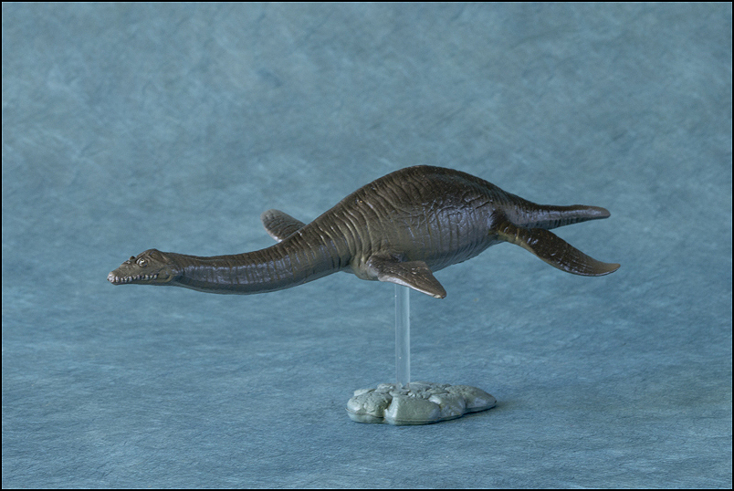 The 2013 KINTO FAVORITE Plesiosaurus walkaround. Plesiosaurus_Kintofavorite-12