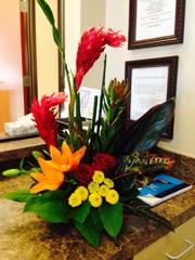 hoa khoe sắc , Image