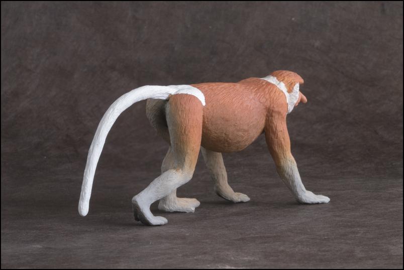 The MOJÖ FUN Proboscis monkey: A walkaround by Kikimalou Proboscismonkey_MOJO-4-_Modifier.jpg_original