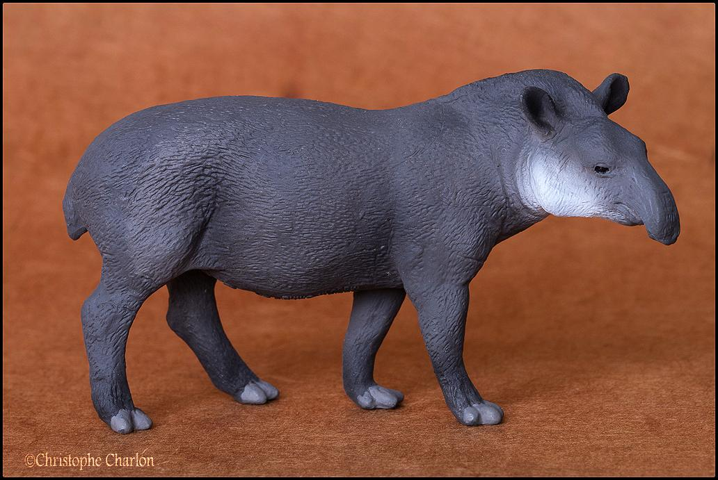 Mojo 387178 Brazilian Tapir: A walkaround by Kikimalou Mojo_387178_Brazilian_Tapir_1.jpg_original