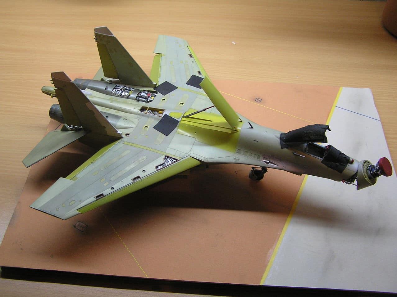 ...καπως ετσι αρχισαν ολα...Su-27  και τα μυαλα στα καγκελα... - Σελίδα 5 P1010205_2