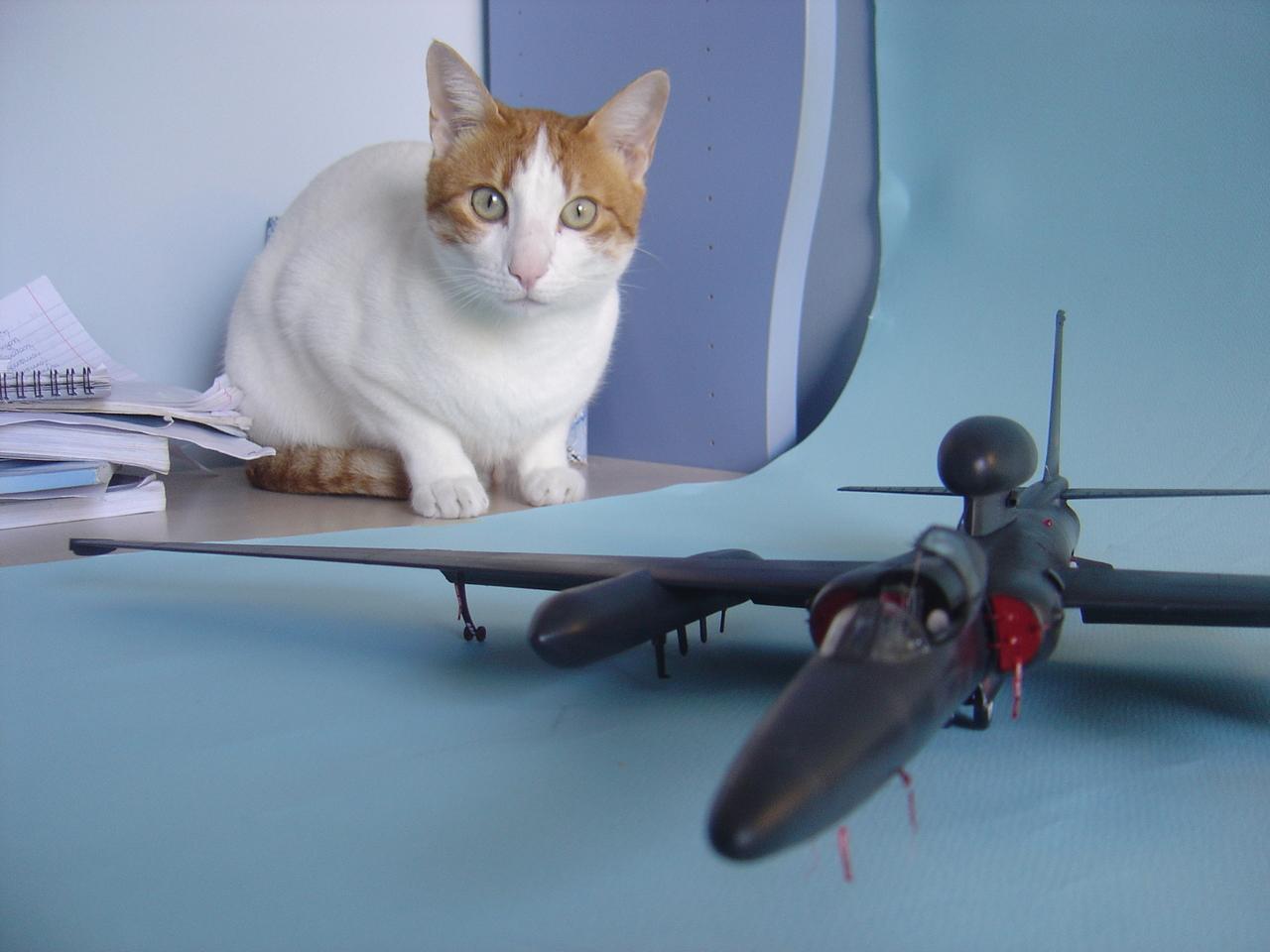 U-2  (οχι το συγκροτημα ρεεε...) R  Senior Span. - Σελίδα 3 Ozi