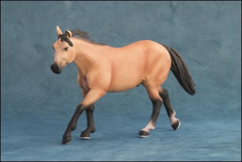 The MOJO FUN 2012 Buckskin Quarter horse walkaround by Kikimalou Buckskin_Quarter_horse_3