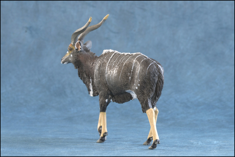 Ana's Nyala: a small walkaround by Kikimalou Mountain_Nyala_DOBROWOSLKA-4.jpg_original