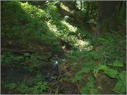 Sljeme - rudnici grofa Cariona P8052279