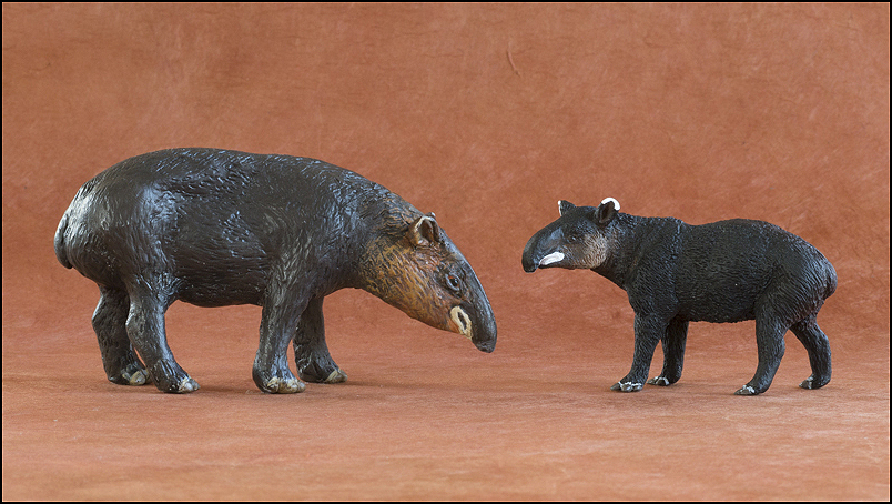 Ana's mountain tapir : A walkaround by Kikimalou Mountaintapir_DOBROWOSLKA-15.jpg_original