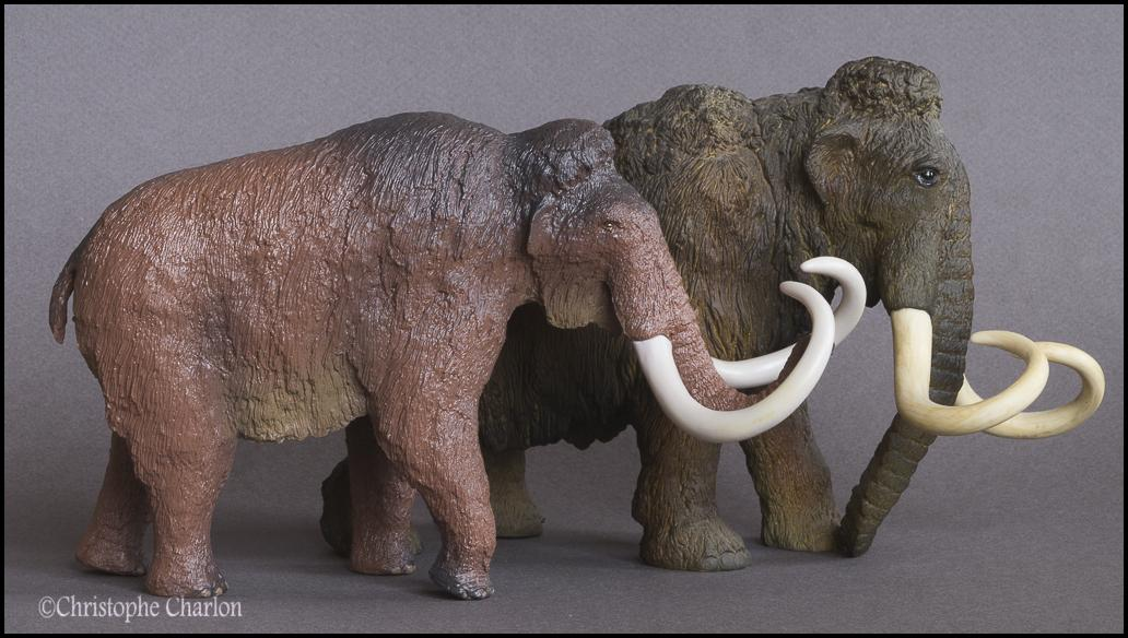 Kinto Favorite FP-002 Wooly Mammoth: A walkaround by Kikimalou Kinto_Favorite_FP-002_Woolly_Mammoth_11.jpg_orig