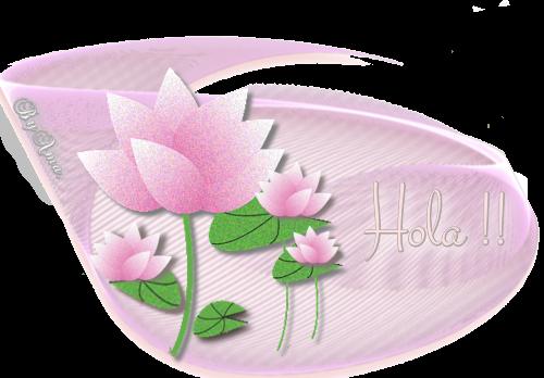 Lotos en Rosa HOLA