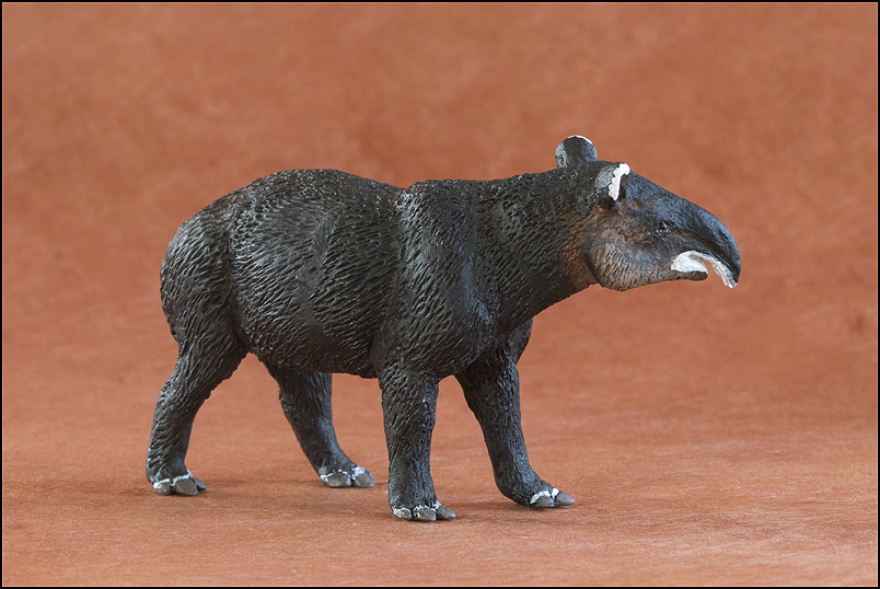 Ana's mountain tapir : A walkaround by Kikimalou Mountaintapir_DOBROWOSLKA-8.jpg_original