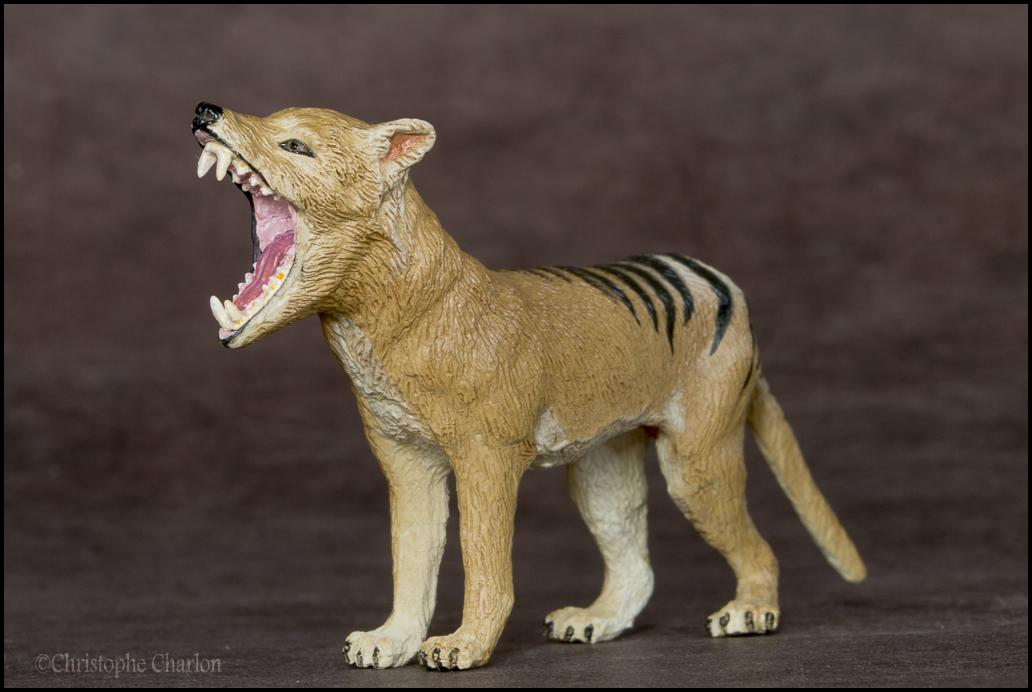 Southlands Replicas Thylacine (the toy) walkaround by Kikimalou Southlands_Replicas_00000_Thylacine_male_8.jpg_o
