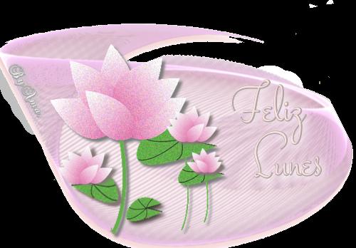 Lotos en Rosa LUNES