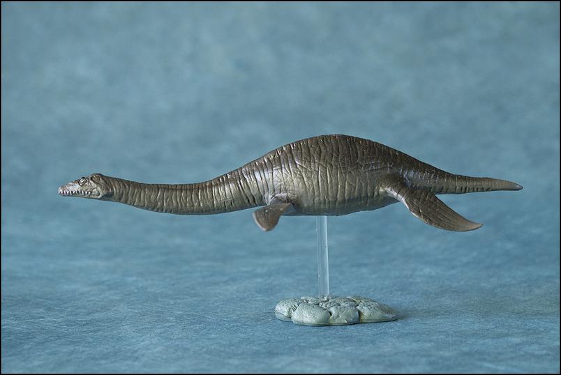 The 2013 KINTO FAVORITE Plesiosaurus walkaround. Plesiosaurus_Kintofavorite-23
